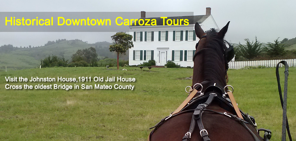 Historical Downtown Carroza Tour